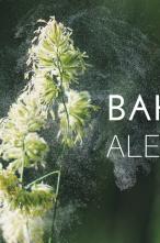 Bahar Alerjisi Olanlar İçin Öneriler