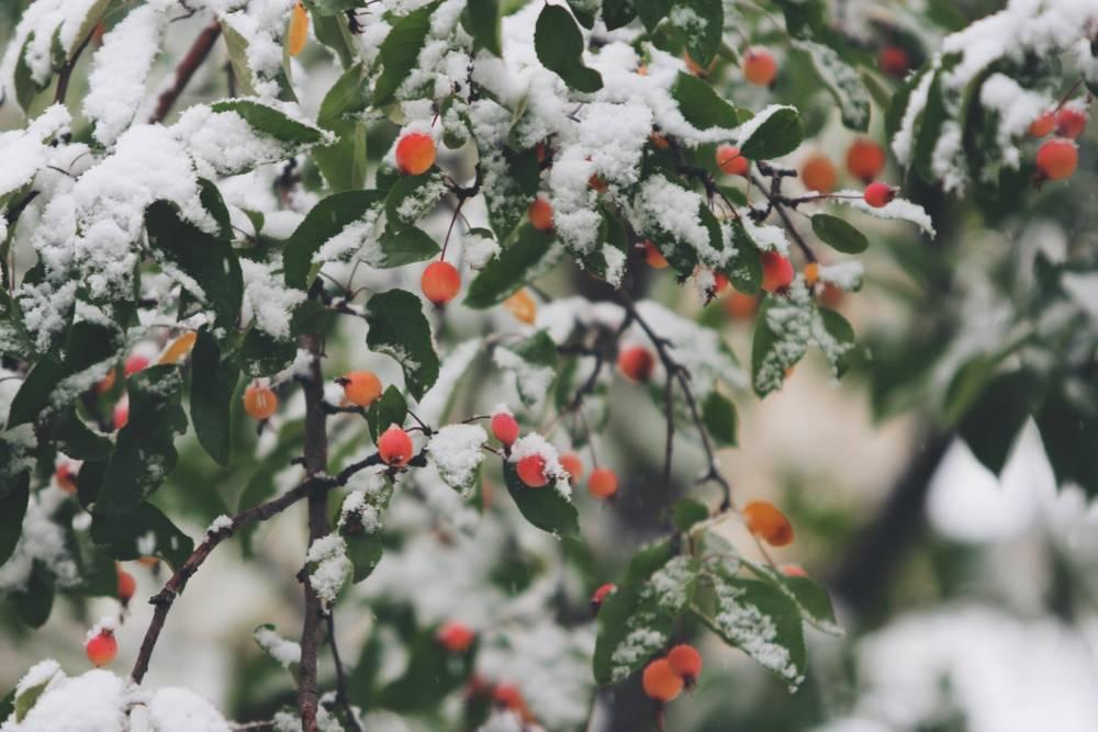 Soğuk Havalarda Grip ve Nezle Olmamak İçin 6 Basit Öneri