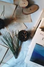 Meraklılarının Mutlaka Okuması Gereken 3 Mistik Paulo Coelho Kitabı